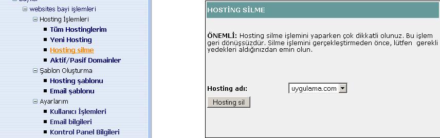 hosting silme