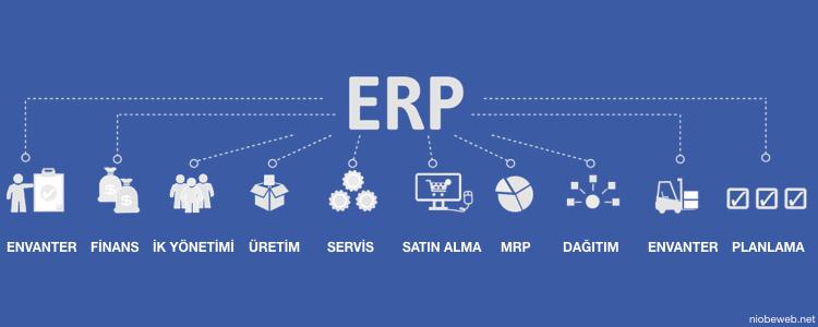 ERP Nasıl Çalışır?