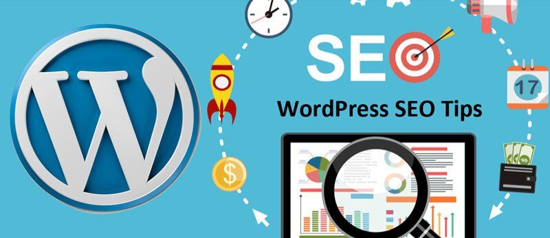 En İyi Seo Optimized WordPress Temaları